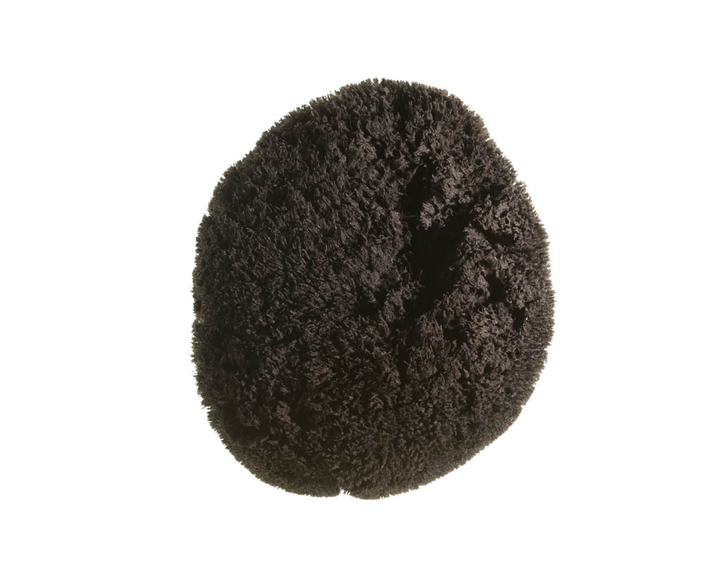 Dyed sponge